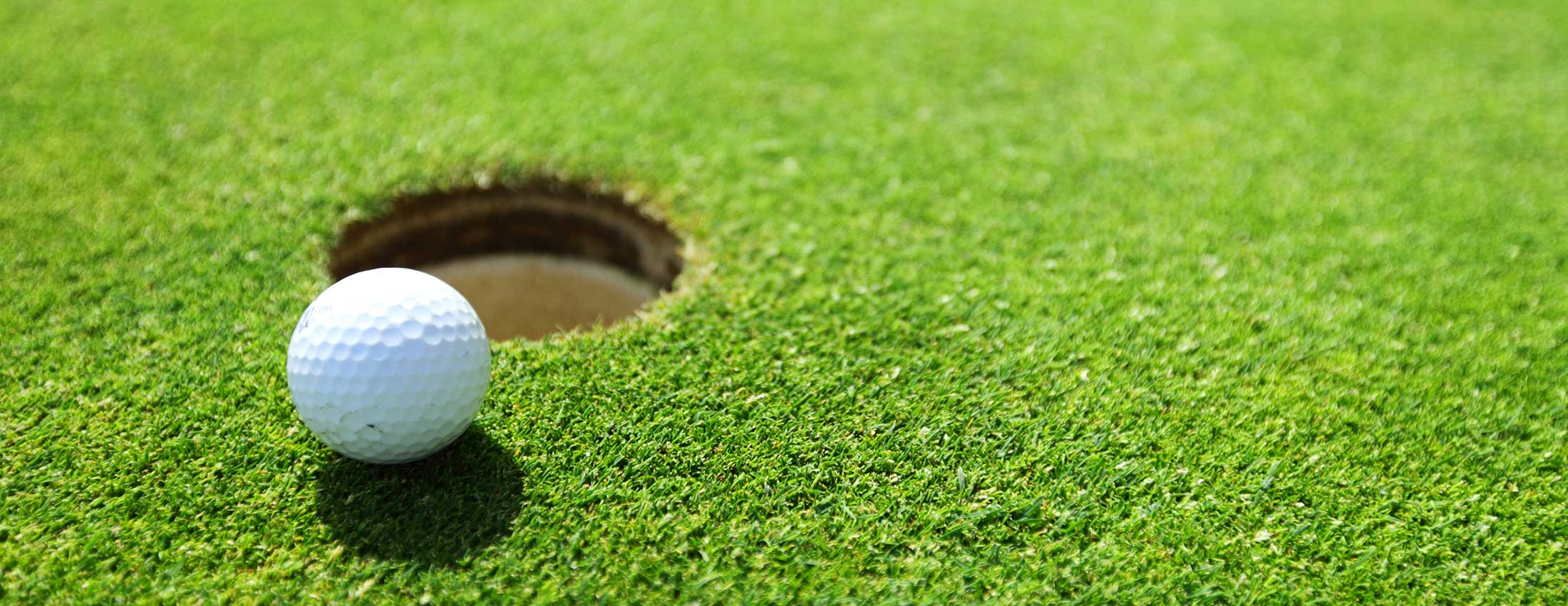 Managing Premier Golf Courses Without Chemicals