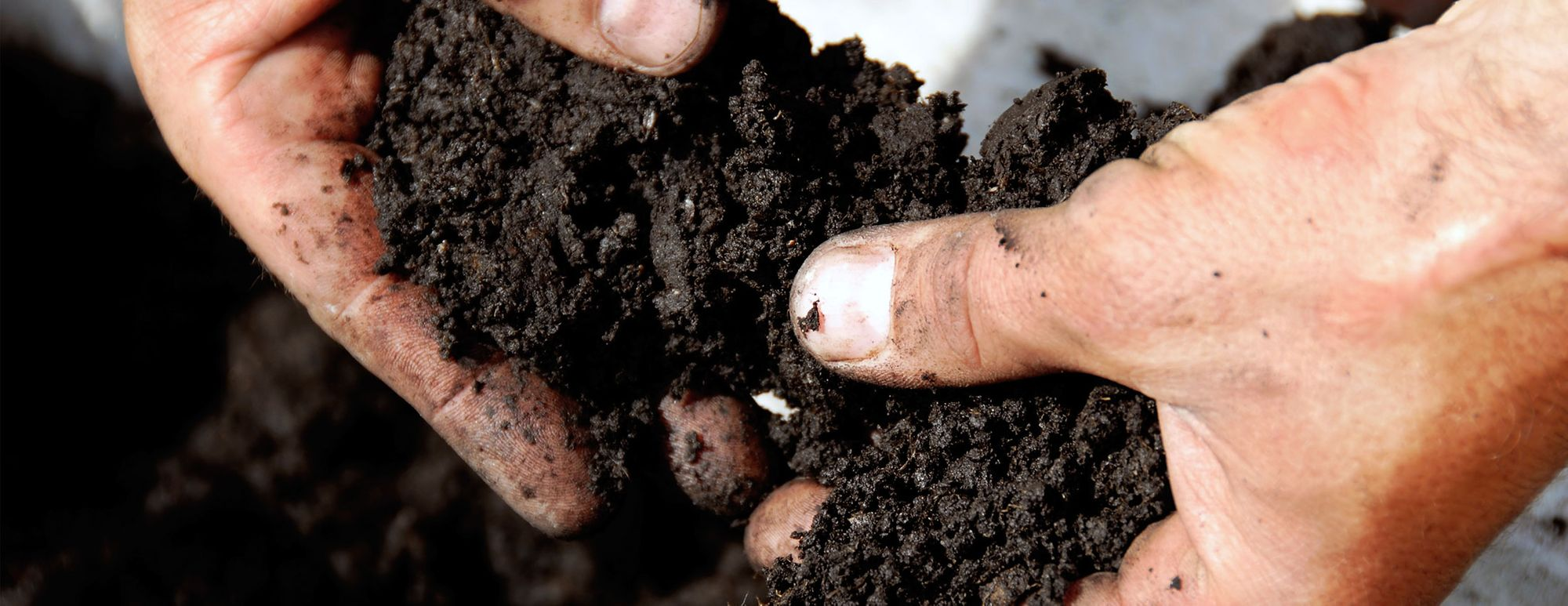 Soil & Leaf Testing – A Critical Step for Profitable Crops