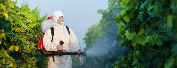 Is Glyphosate Sustainable? – A Closer Look At The World's Favourite Farm Chemical