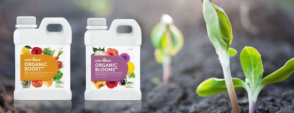 NTS Launches Organic Home Garden Products