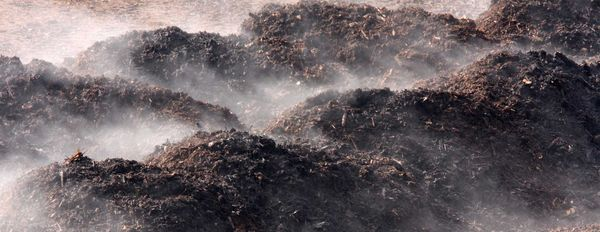 The Planet Saving Potential of Compost